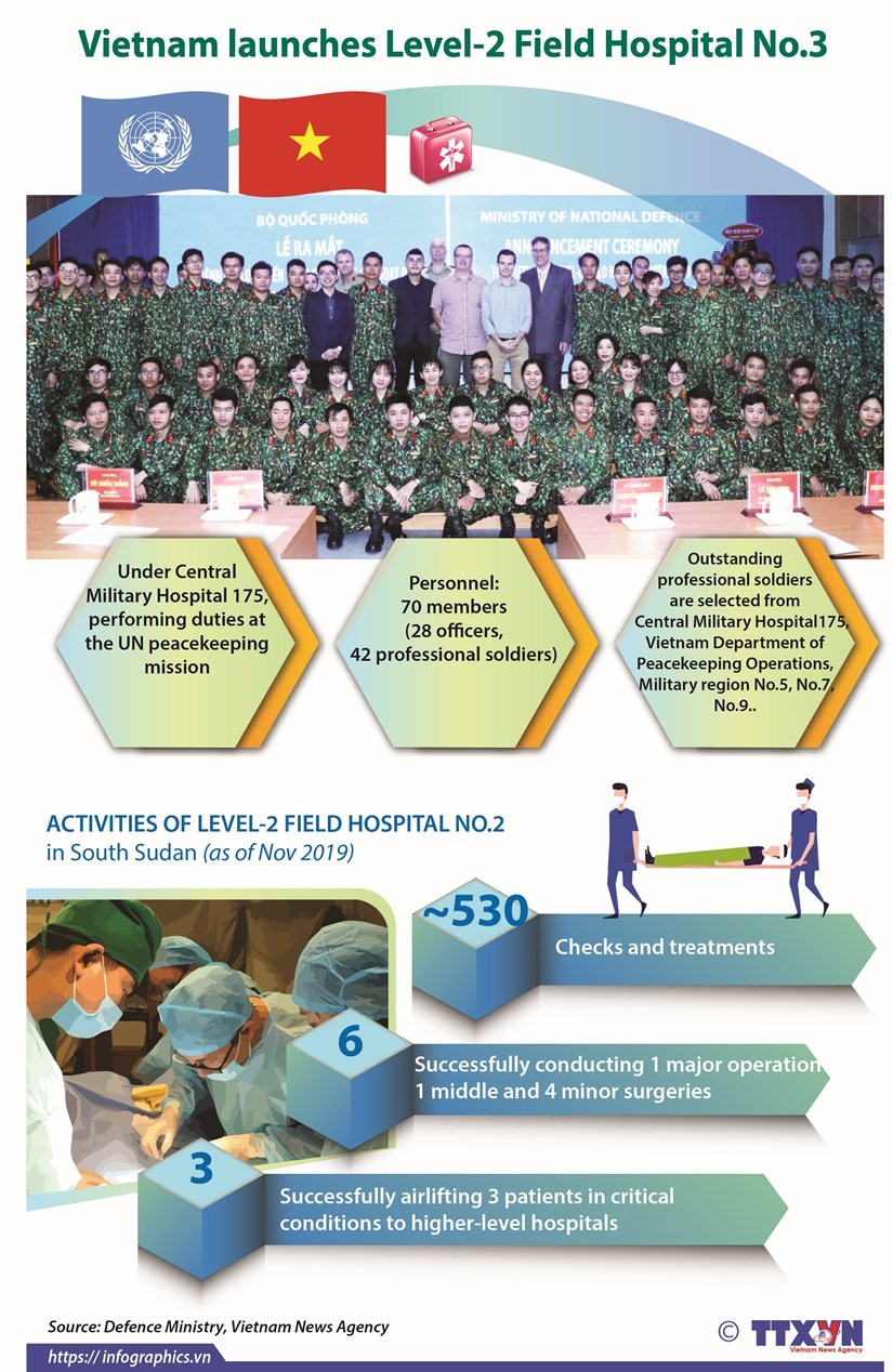 Vietnam launches Level-2 Field Hospital No.3 hinh anh 1
