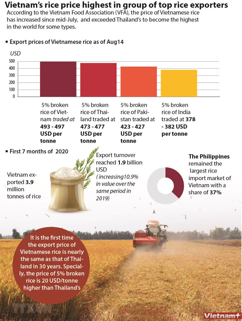 Vietnam's rice price highest in group of top rice exporters hinh anh 1