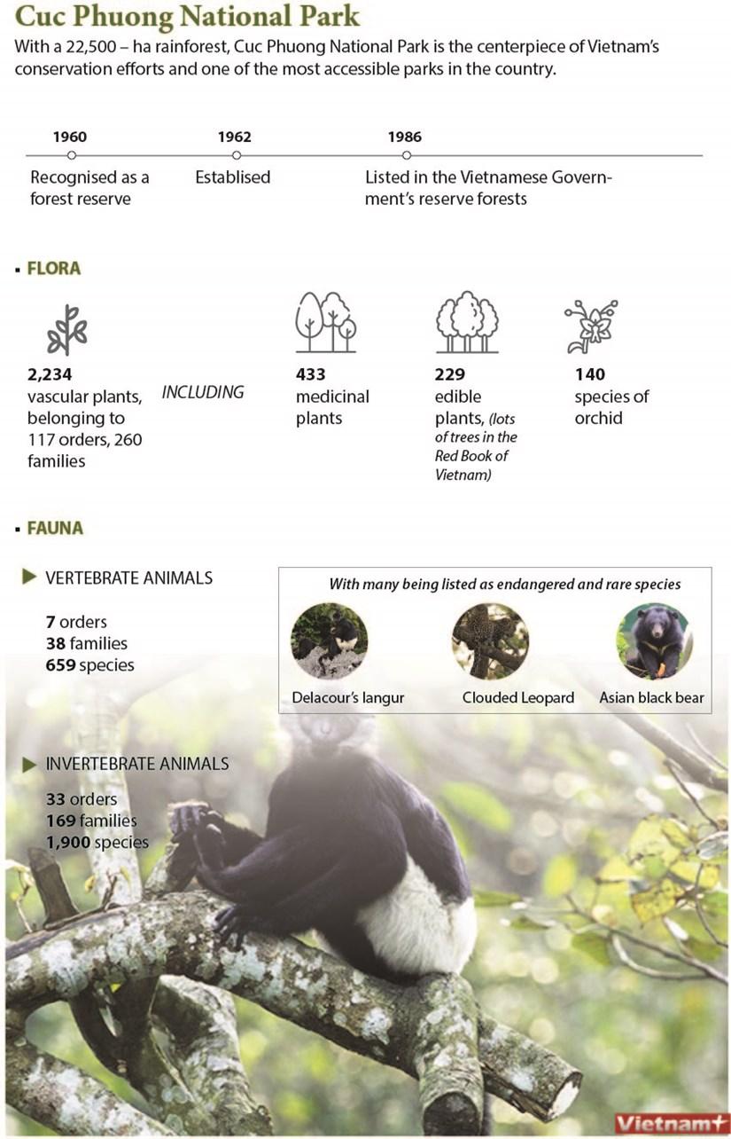 Cuc Phuong National Park hinh anh 1