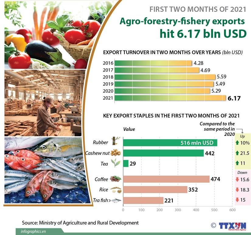Agro-forestry-fishery exports hit 6.17 bln USD hinh anh 1