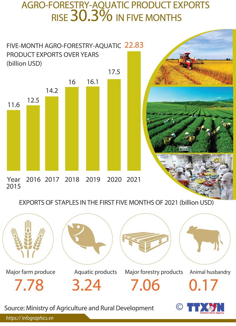 Agro-forestry-aquatic product exports rise over 30% hinh anh 1