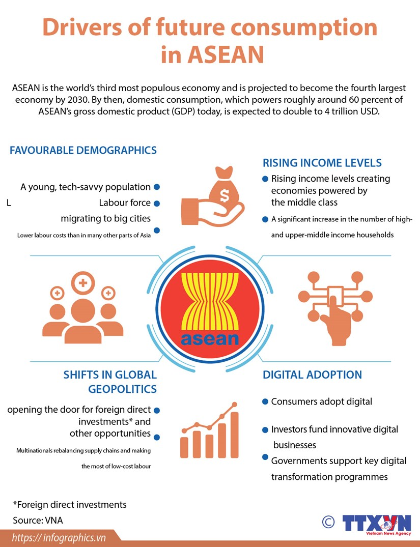 Drivers of future consumption in ASEAN hinh anh 1