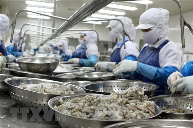 Agro-forestry-fisheries exports up over 24 percent in Jan-Apr