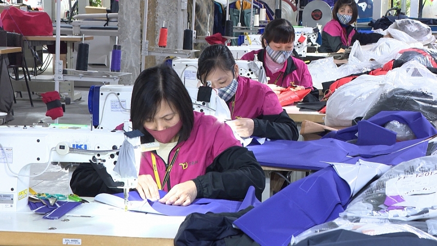 Thai Binh works to attract big investors in industry